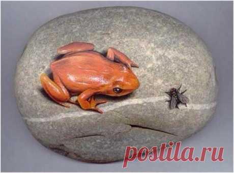 Реалистичные 3D рисунки на камнях 🐸 Смотрятся очень естественно 😃