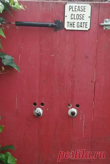 """""""Пожалуйста, закрывайте ворота"""" Модная одежда и дизайн интерьера своими руками"""