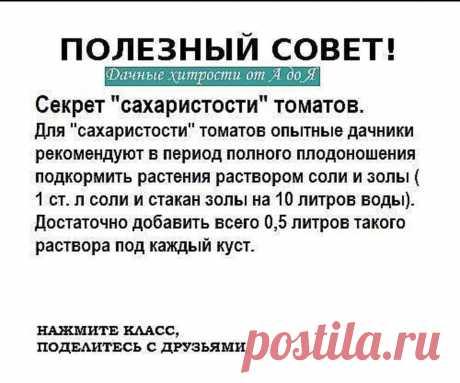 """* Присоединяйся прямо сейчас →   https://ok.ru/lyubovktom * Чтобы не потерять пост, жмите """"Поделиться"""". Пост окажется в заметках."""