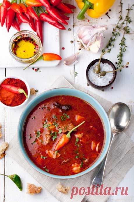 Охотничий суп - Life tastes great! — ЖЖ