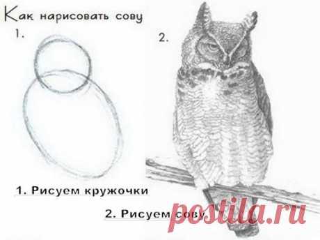 600+ смешные картинки с подписями))) присоединяйтесь! ПРИКОЛЫ ЮМОР ШУТКИ ツ группа фб