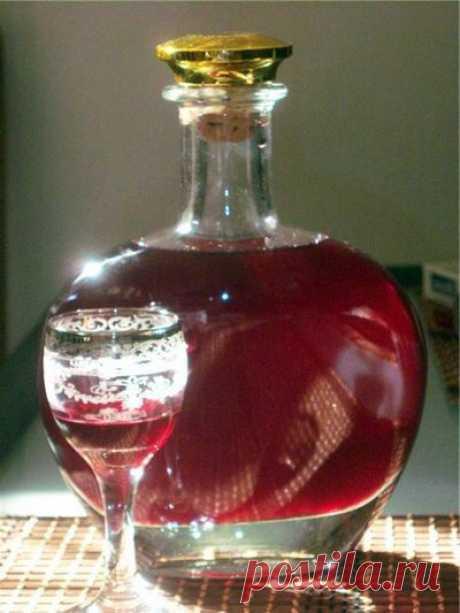 Домашнее вино из смородины | Дамская копилка