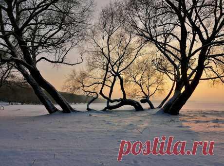 Фотография ... диминуэндо света ... из раздела природа №6894502 - фото.сайт - Photosight.ru