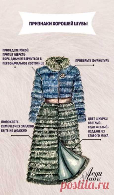 5 правил при выборе шубы Зима уже стоит на пороге и совсем скоро модницы наденут красивые шубки и сколько бы не говорили, что шуба утратила актуальность в этом сезоне, для русской зимы это самая популярная и любимая верхняя одежда.