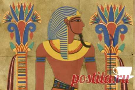 Каркаде — польза и вред «напитка фараонов»   CityWomanCafe.com