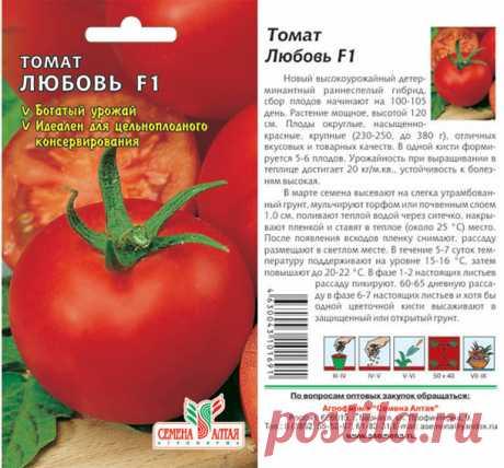 Семена овощей купить, сибирские селекция - Семена Алтая