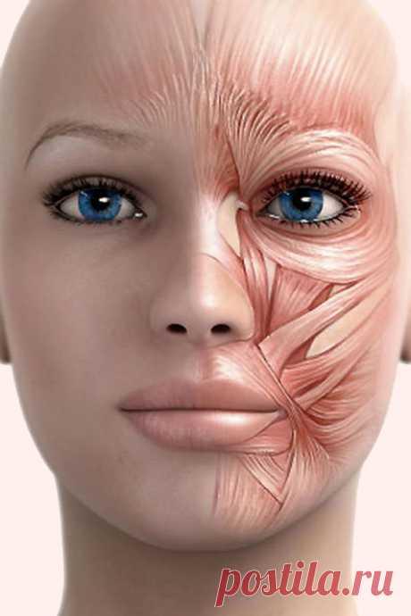 Корейский лимфатический массаж: идеальная кожа и открытый взгляд! - Я узнаю