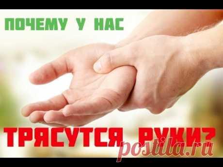 Не разгибаются руки после тренировки, болят или трясутся: что делать? Почему трясутся, болят или не разгибаются руки после тренировки и что делать? Неприятные ощущения в руках и дискомфорт бывают, как правило, вызваны перенапряжением мышц, несбалансированной нагрузкой, а также длительным перерывом между тренировками. Если нагрузка рассчитана правильно, после тренировки возникает приятная усталость в мышцах. Важным моментом является обязательная разминка, которая позволит р...