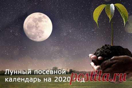 Посевной лунный календарь садовода и огородника на 2020 год | Good-Tips.PRO Лунный посевной календарь на 2020 год в таблицах. Органическое земледелие в соответствии с фазами Луны. Когда сажать рассаду