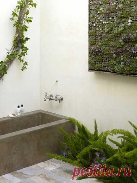 Вертикальный сад для интерьера своими руками.