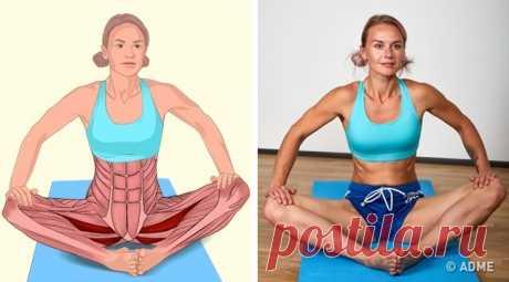 18 изображений, которые наглядно покажут, какие мышцы вы растягиваете - Женский журнал - медиаплатформа МирТесен