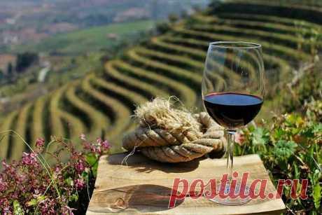 Чем принципиально отличаются крымские портвейны от португальских? | Ежедневный винный телеграф | Яндекс Дзен