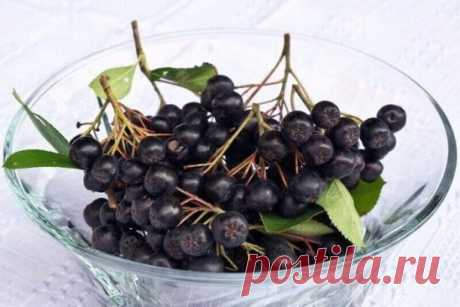 Лекарство из черноплодной рябины