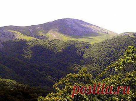 РОМАН-КОШ, гора в Крыму. (Ороман, Араман, Орман-Кош). Роман-Кош является самой высокой вершиной на Крымском полуострове. Расположена в массиве Ба-буган-яйла в основной гряде Крымских гор. Высота этой горы — 1545 м над уровнем моря. В основном она сложена известняками.