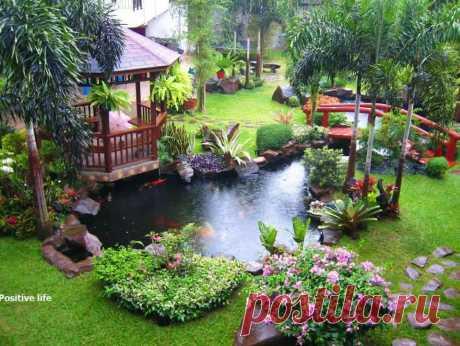 «Красивый сад а даче с ландшафтным дизайном» — карточка пользователя Ольга М. в Яндекс.Коллекциях