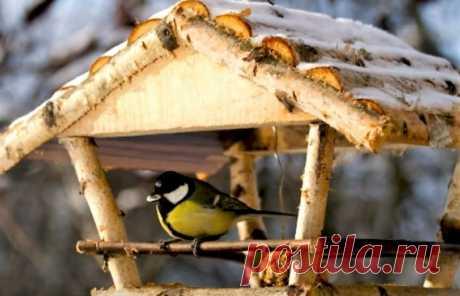 Кормушка для птиц очень нужна пернатым в зимнее время, когда для них наступают голодные дни. Люди дружат с пернатыми, которым с каждым днем найти пищу становится все труднее. Поэтому, смастерите вместе с детьми кормушку и насыпьте в нее разного корма. Поделки можно делать из самых разных материалов, дерева, деревянных брусочков или палочек, веточек, простых подручных материалов.