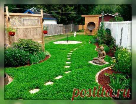 Три альтернативы газонной траве: для красоты, удобства и комфорта на вашем участке, без хлопот | Тысяча и одна идея Что можно выращивать вместо газона? Всем, кто решился на эксперименты, рекомендуем обратить внимание на 3 интересные решения для ландшафтного дизайна.