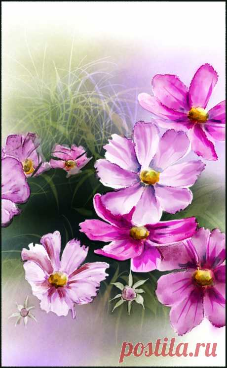 pink flowers-new-2A_002 | Skip Allen Paints