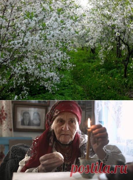 Какое утро будет добрым: моя бабушка научила меня 7 правилам хорошего утра | Код Благополучия | Яндекс Дзен
