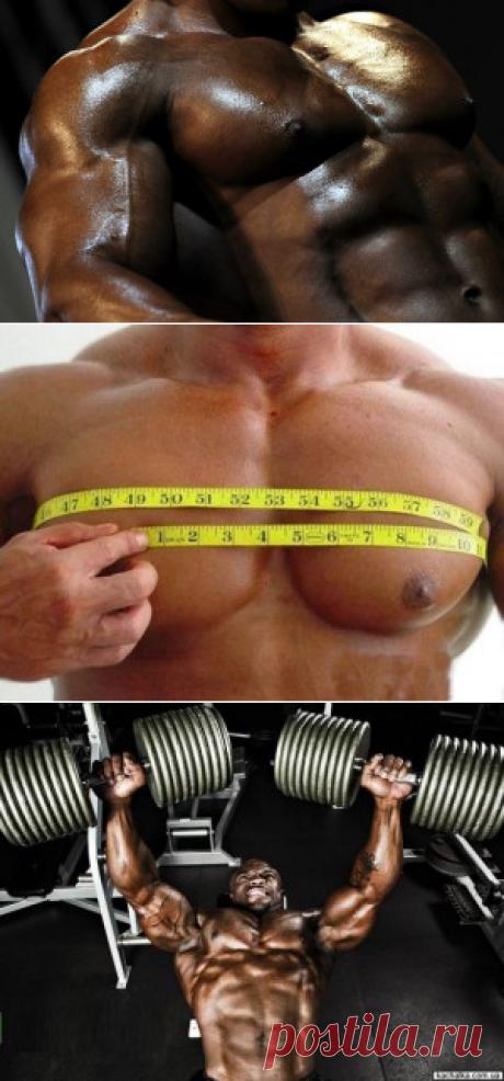 Как накачать грудь? | Sport My Way | Sport - My Way