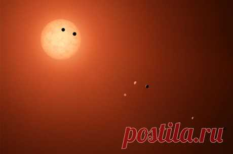 Три планеты системы Trappist-1, находящиеся в потенциально пригодной для жизни зоне, находятся так близко друг от друга, что высока вероятность наличия живых организмов на каждой из них
