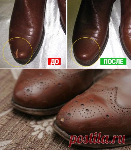 Обувь из кожи, кожаные сумки и кожаный диван — привела всё в порядок! - womanlifeclub.ru