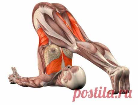 Упражнение - гепатопротектор — лечим печень без медикаментов!