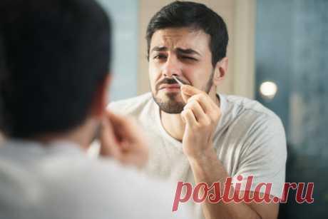 Почему нельзя выдёргивать волосы из носа — ЗдоровьеИнфо Казалось бы, ну волосы и волосы. Не особо они и нужны (разве что отгонять своим видом назойливых ухажёров). Пара секунд – и никаких зарослей…