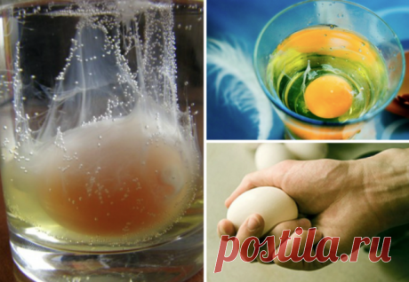 СБОР НЕГАТИВА НА ЯЙЦО! Снятие негатива с человека и лечения несложных болезней сырым яйцом. Перед сном: В стакан, наполовину наполненный водой, вбить сырое яйцо (не размешивать). Над стаканом произнести: «все худое, все плохое пусть вытекает в этот стакан», поставить у изголовья на ночь. Утром смотрим на яйцо в стакане. Желток — это жизнь человека, а белок — это среда, окружающая его: могут быть пузырьки, нити, которые тянутся вверх, туман, колпак, либо вообще яйцо «взбито...