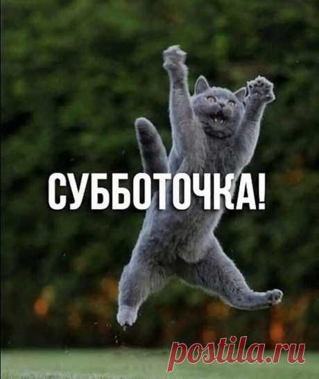 Галина Поштар - Google+
