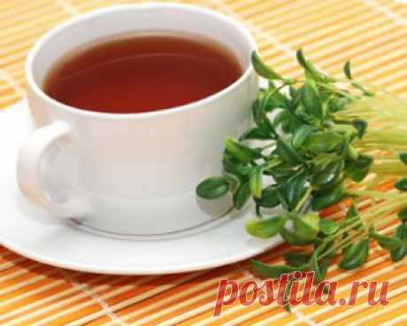 Лекарственные травы и травяные сборы для похудения