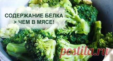 5 продуктов, в которых белка больше, чем в мясе! Едим и не полнеем! - tu-baginya.ru