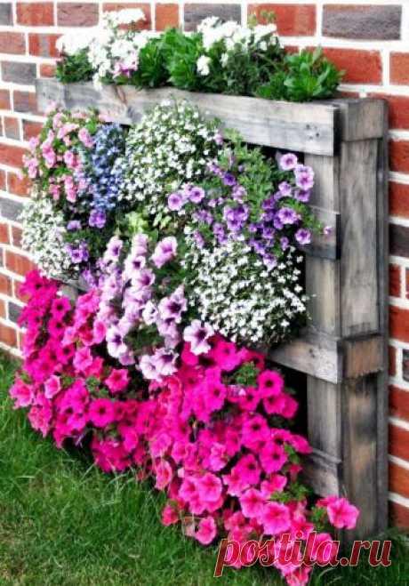 Как сделать клумбу или цветник на даче своими руками из подручных материалов — Дом и Сад
