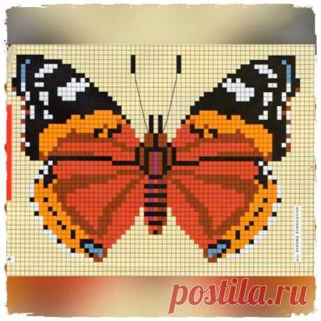 We embroider butterflies