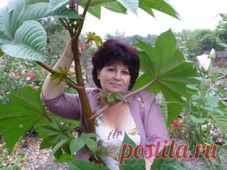 Людмила Усачева