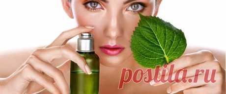 Как использовать эфирные масла, чтобы избавиться от жира