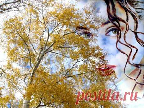 Осень не трави мне душу, По летним тропинкам не ходи, Не гони ты в моё сердце стужу, Дожди холодные ветру подари,  Осень,ты на меня похожа, Жизнь,как у меня,птицею летит, В сентябре красива, молода, пригожа, Время пролетит, декабрь поспешит,  В октябре паук морщинки дарит, На лице твоём плетёт красивую вуаль, Ноябрь  от души седины в дар приносит, Виски  и землю первым снегом порошит...   © Copyright: Александра Бонсюкова,