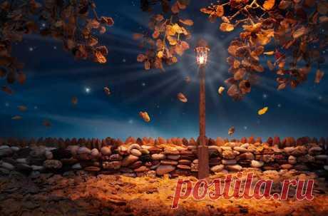 Carl Warner. Autumn-Flakes