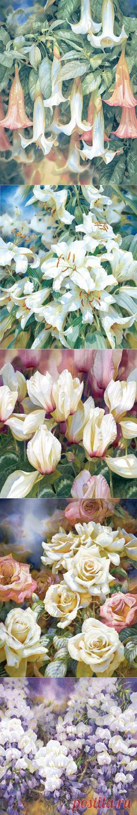 Яркая акварель от Darryl Trott  Многие зрители не могут поверить,  что яркие сочные цветы - это  результат акварельных красок, ведь  мы привыкли к тому, что акварельные  работы мягкие, нежные, размытые...