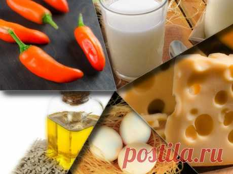 Закуски из жареного сыра в панировке | Рецепты старого дома | Яндекс Дзен