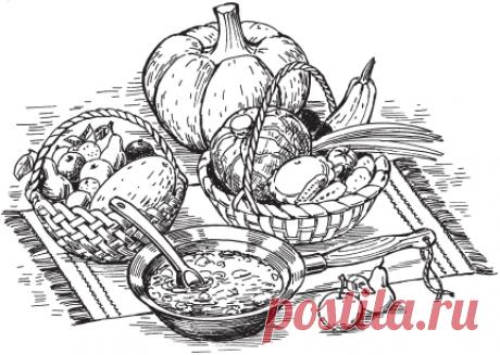 Помидоры и кабачки. Всё о хранении и заготовлении овощей и фруктов