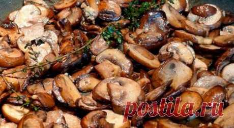 Теперь жарю грибы только по этому рецепту. идеальный вкус! — В РИТМІ ЖИТТЯ