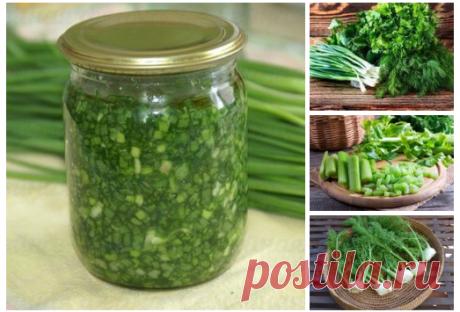 5 рецептов заготовки из ароматной зелени на зиму без особых затрат, сил и времени