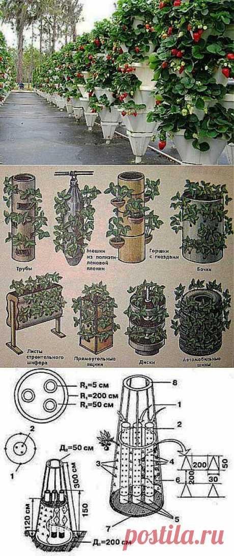 Вертикальное выращивание растений — как сделать вертикальные грядки | Умелые ручки