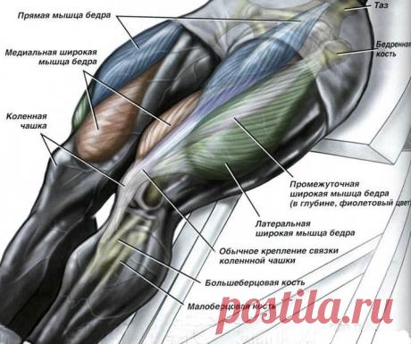 Тренировка для сильных и здоровых ног после 60 лет. Долголетие в силе ног. | health and beauty | Яндекс Дзен