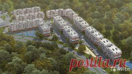 1-к квартира, 33.3 м², 2/5 эт. - купить, продать, сдать или снять в Калининградской области на Avito — Объявления на сайте Avito