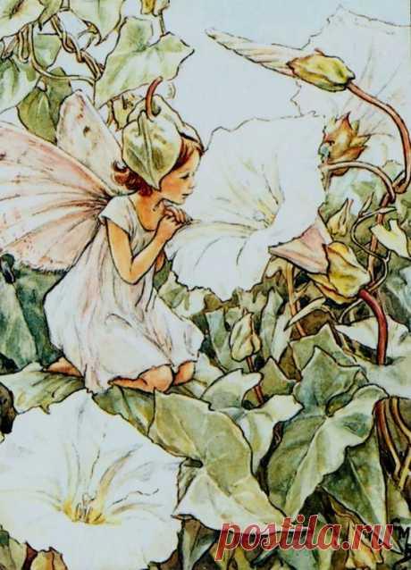 Художник Сесиль Мэри Баркер (1895 - 1973)