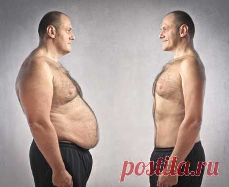 6 surprising products with effect of weight loss | Oh, damn Loss of excess weight is not accompanied only by physical activity — paraphrasing the known advertizing slogan, sometimes it is enough to chew. But is more harmonous than you the movement of jaws, how many old-kind chemistry which in the answer for all in our life does not so much. All calories unnecessary us are burned in process hearths under the name thermogenesis. To put it in action, it is necessary to eat because also a metabolism, and ra...