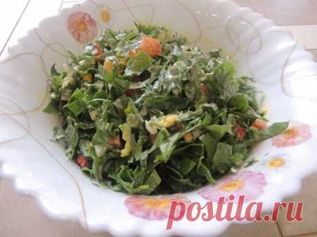Витаминный салат из свежего щавеля | Блоги о даче и огороде, рецептах, красоте и правильном питании, рыбалке, ремонте и интерьере