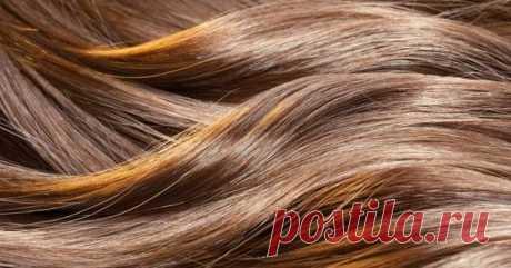 Почему волосы быстро теряют свежесть —  12 распространённых причин. И что с этим делать | Люблю Себя